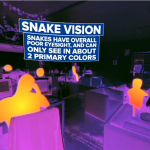 Place yourself in the vision of the animals as only the VR can achieve