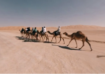 Riding a camel in 360 never before had it been so fun