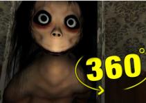 Momo 360° Experience