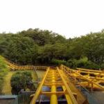 Seoul Roller Coaster